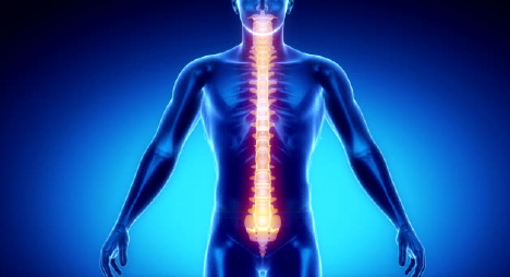 All companies need a strong spine, how healthy is yours?